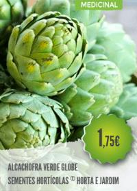 Alcachofra Verde Globo