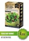 Folhas Baby Salada Gourmet