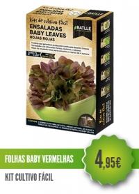 Folhas Baby Salada Vermelha