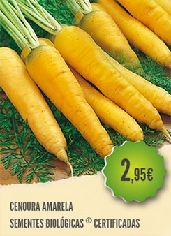 Cenoura Amarela