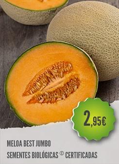 Meloa Best Jumbo