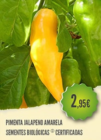Pimenta Jalapeno Amarela