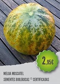 Meloa Moscatel