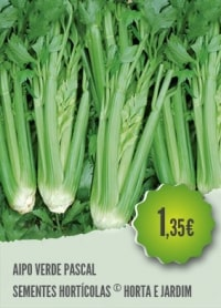 Aipo Verde Pascal