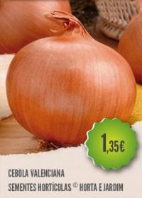 Cebola Valenciana