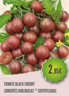 Tomate Black Cherry