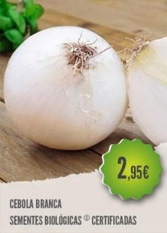 Cebola Branca