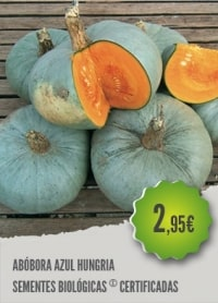 Abóbora Azul Hungria