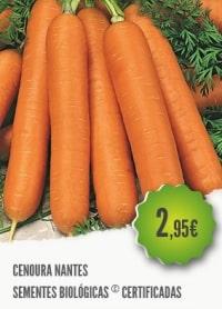 Cenoura Nantes