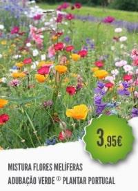 Mistura Flores Melíferas