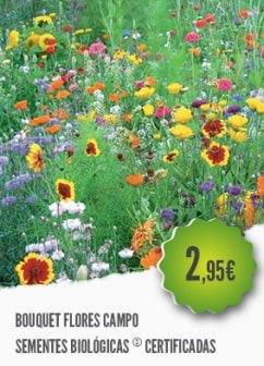 Bouquet Flores Campo