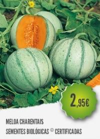 Meloa Charentais